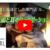 YouTubeデビューしました!